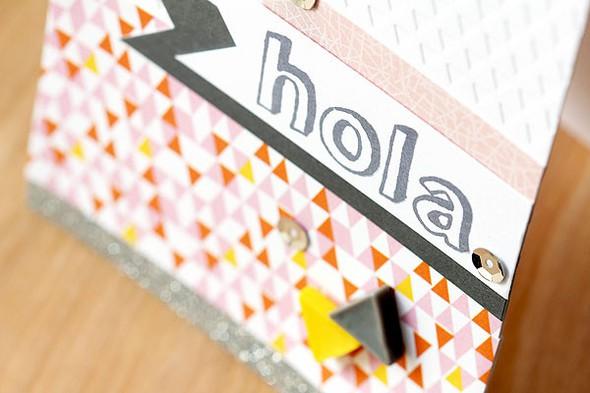 Ls hola cas147 closeup