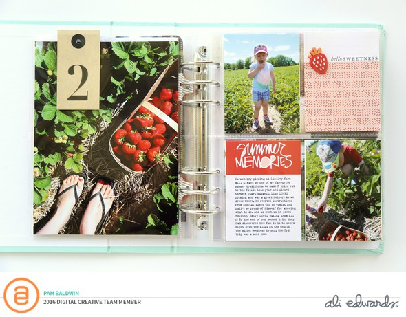 Pbaldwin summermemoriesjournalcards full layout original