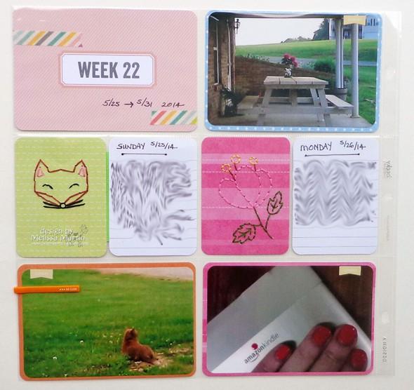 Msm's pl week 22 (lt) dsc01878 (blurred)