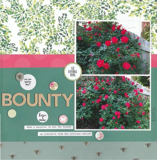 Bounty original