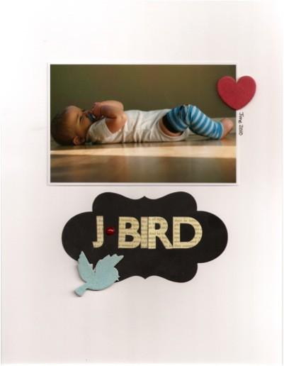 J bird