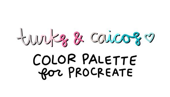 Cd color palette turkscaicos original