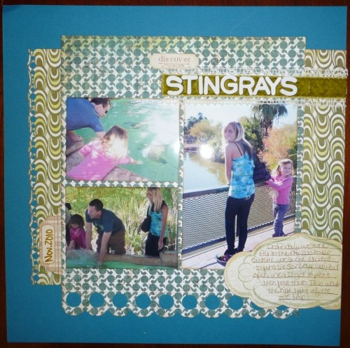 Stingrays small
