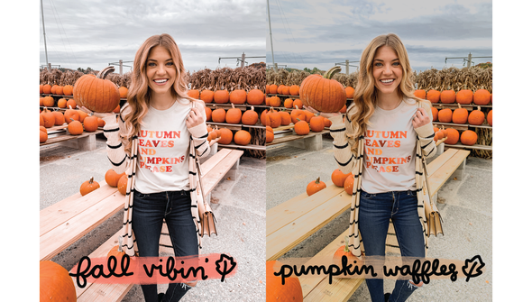 99021 digital presets for photos fall slider 02 original