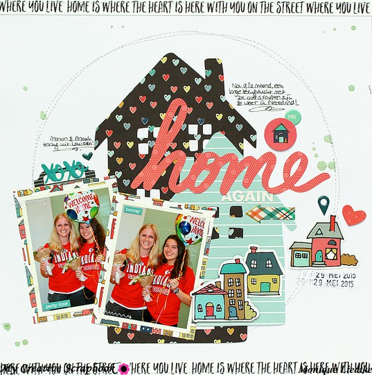 Mliedtke mcs june kit home again 900 original