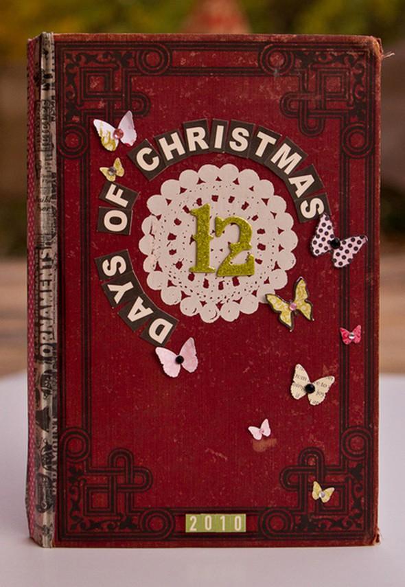 12 days of christmas 14