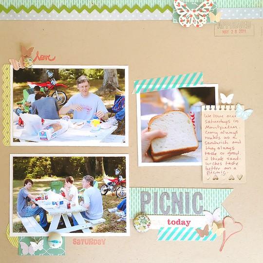 2011 picnic mp