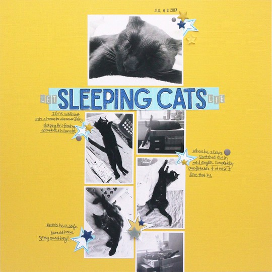 Jamieleija ellesstudio july2017 sleepingcats 03 original