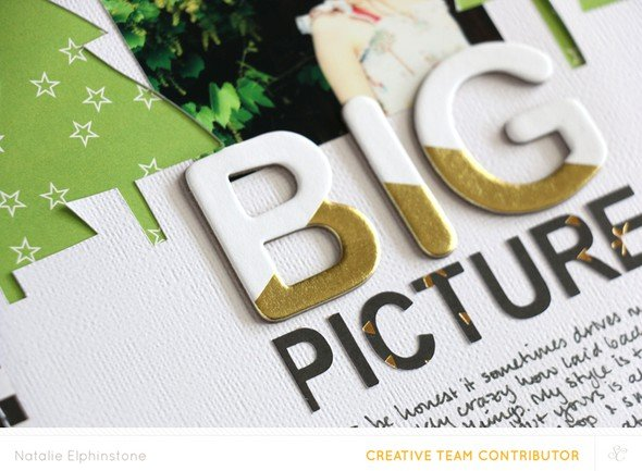 The big picture by natalie elphinstone 2 original