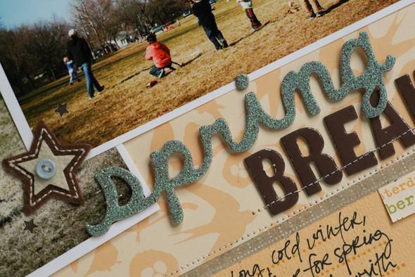 Springbreakdetail