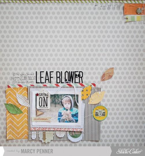 Sc leaf blower