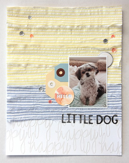 Littledog 1