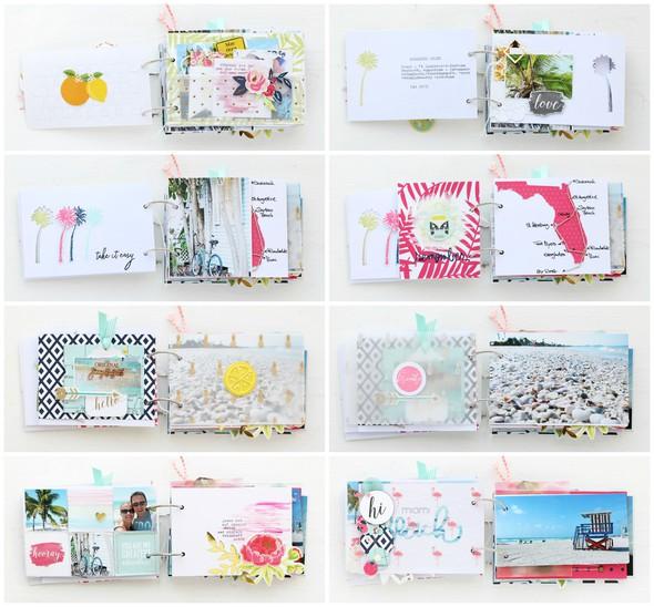 Steffiried mini florida collage 2 b original