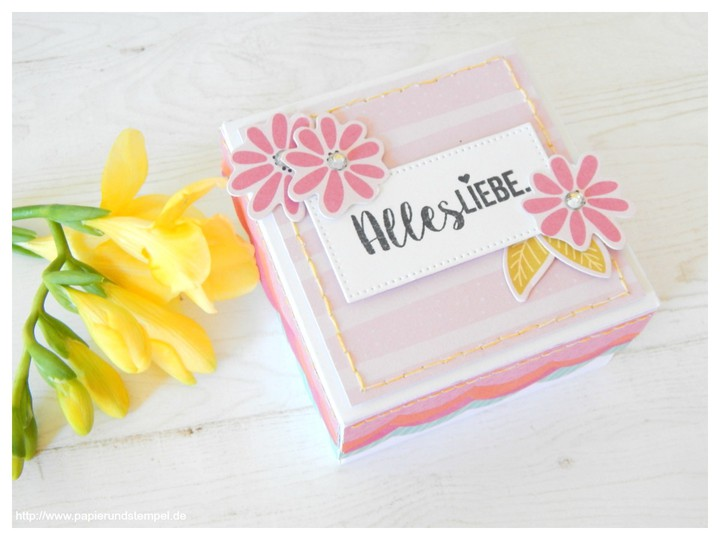 Papierundstempel geschenkset box karte minialbum pink paislee paige evans oh my heart scrapbook werkstatt 2 270517 original