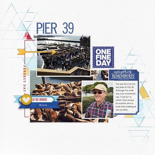 Pier39l original
