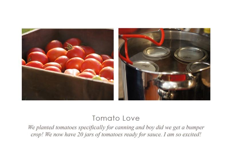 Tomatolove original