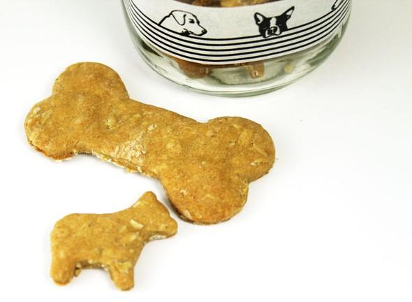 Homemade dog treats sample