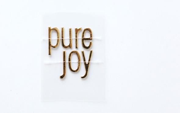Ae dd2013 purejoy