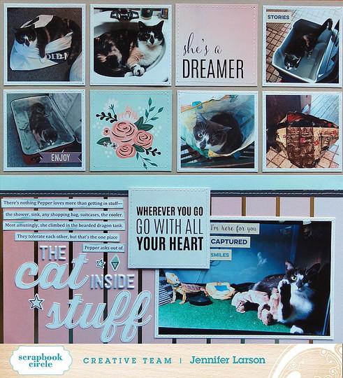 The cat inside stuff by jennifer larson ed original