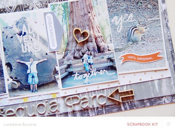 Sequoiaparc det2