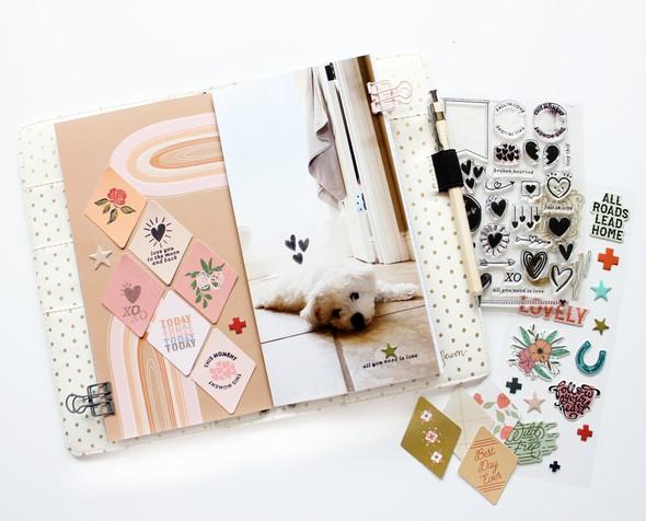 Bpicinich wildandfree notebook addon 01 original