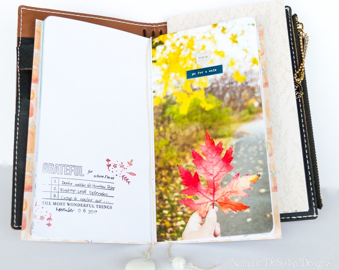 Nathalie desousa gratitude journal6 original
