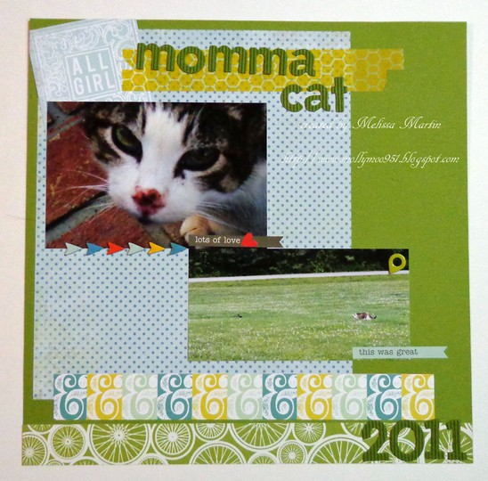 Msm's momma cat dsc01179