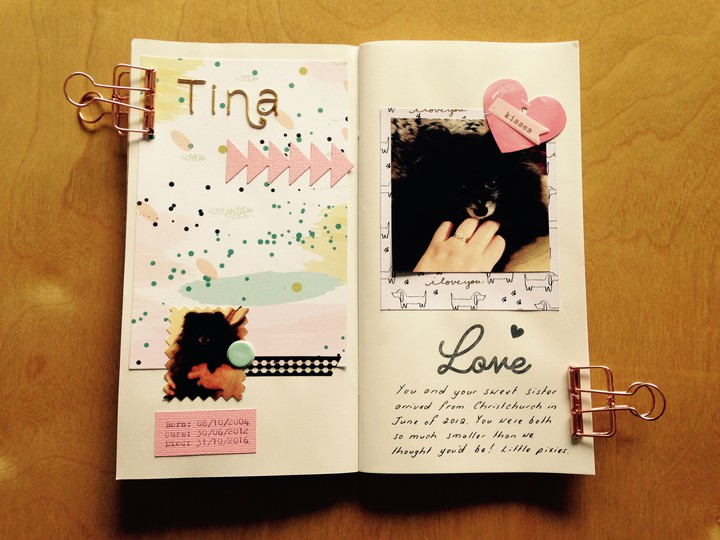 Tina notebook page 1 original