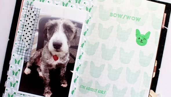 Scoutluna dogstamp inuse04 original