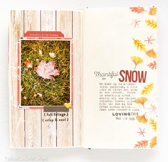 My gratitude journal week 2 3 original