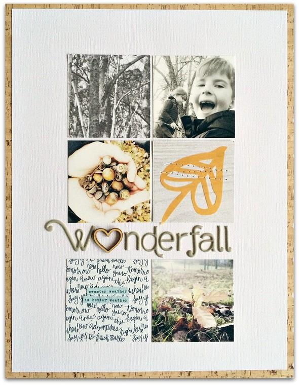 Wonderfall1