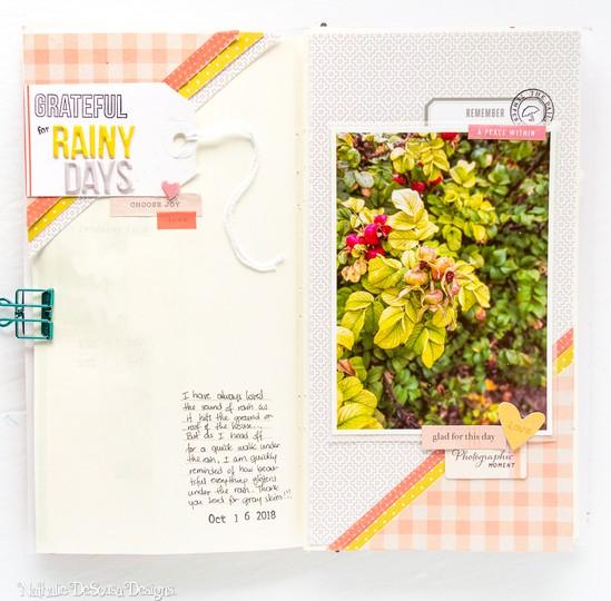 My gratitude journal week 2 2 original