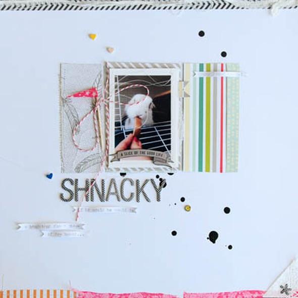 Shnacky001 net