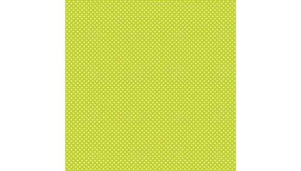 Slider  0023 t6294 spring 12x12 paper pad artwork 10a original