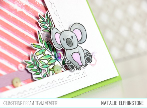 Koala card detail original