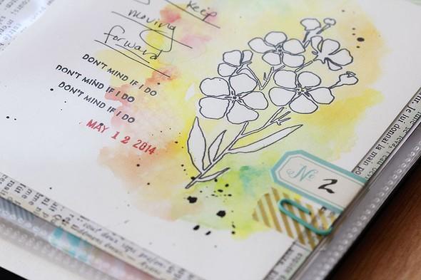 Start flower closeup