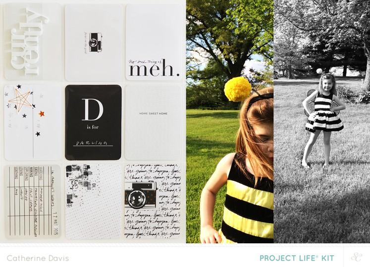 Sc catherinedavis bee original