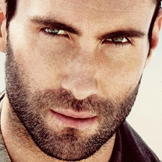 Levine1