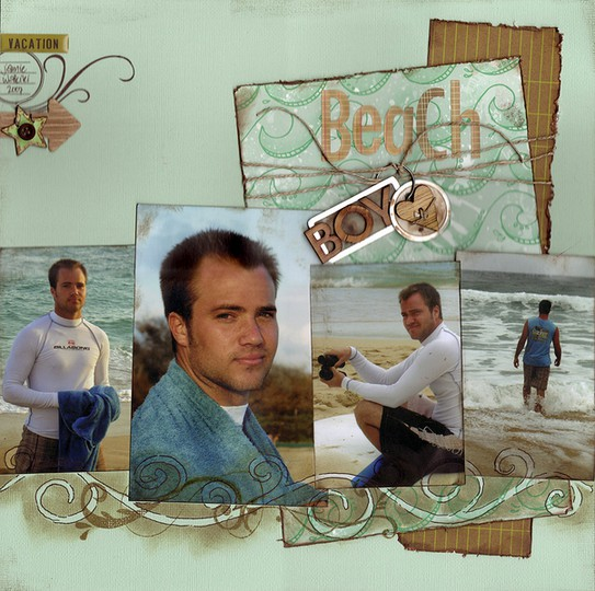 Beach boyred