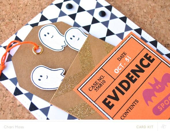 Ghostlyevidence detail2