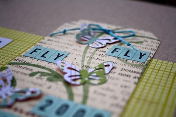 Flyflyflyclose2 1