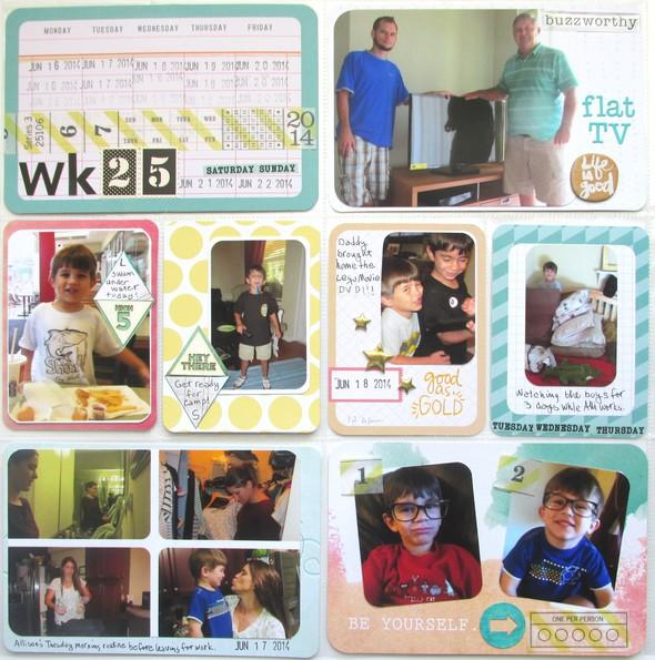 2014 wk25l