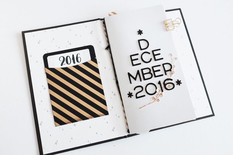 Dd2016 cinback coverpocket 1 original