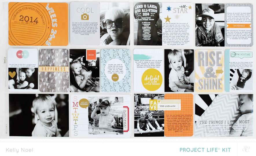 Pl 2014 weeks 33   34   kelly noel   studio calico poet society project life kit