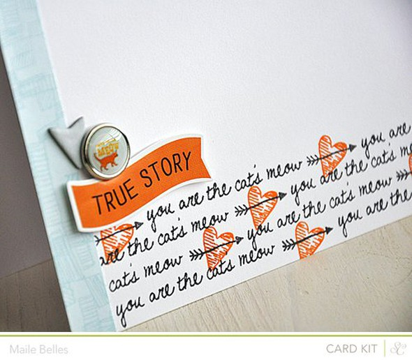 True story card detail