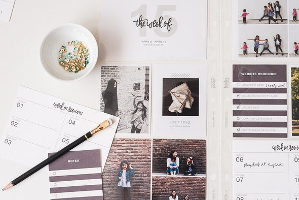 Paislee pocketguideno4 0116 original