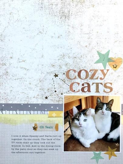 Cozycats original