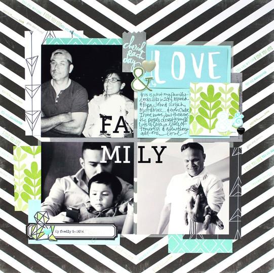 2014family01