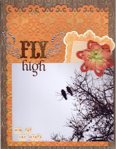 Fly high  388 x 500