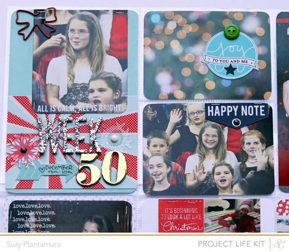 Week 50a 2013 close up 1